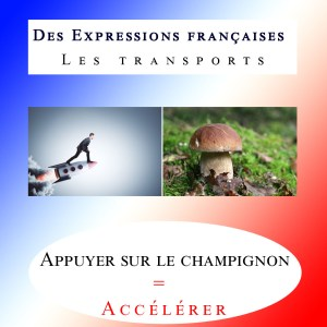 French Expressions related to transports 🏎️