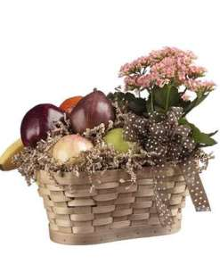 Fruit & Kalanchoe Gift Basket 54.99