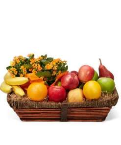 Beautiful Kalanchoe and Bountiful Fruit Basket 54.99