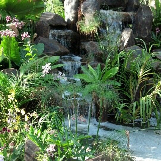 Photos At Pesta Flora Putrajaya 311 Visitors