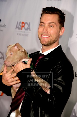 LANCE BASS at ASPCA young friends Benefit at IAC Building 555 W.18st 10-15-2015 John Barrett/Globe Photos 2015