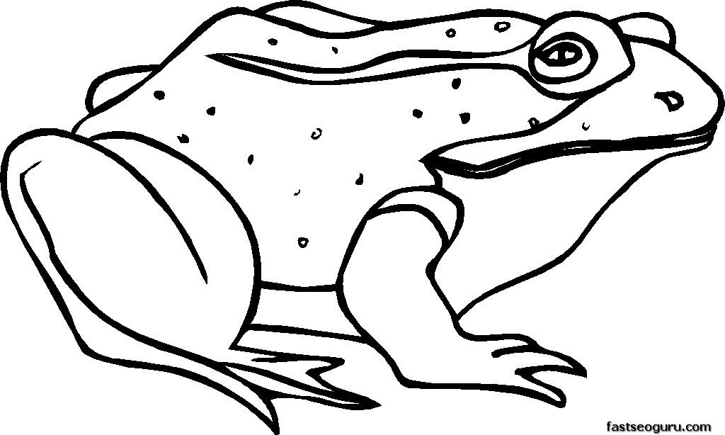 pictures frog printable coloring pages printable coloring pages