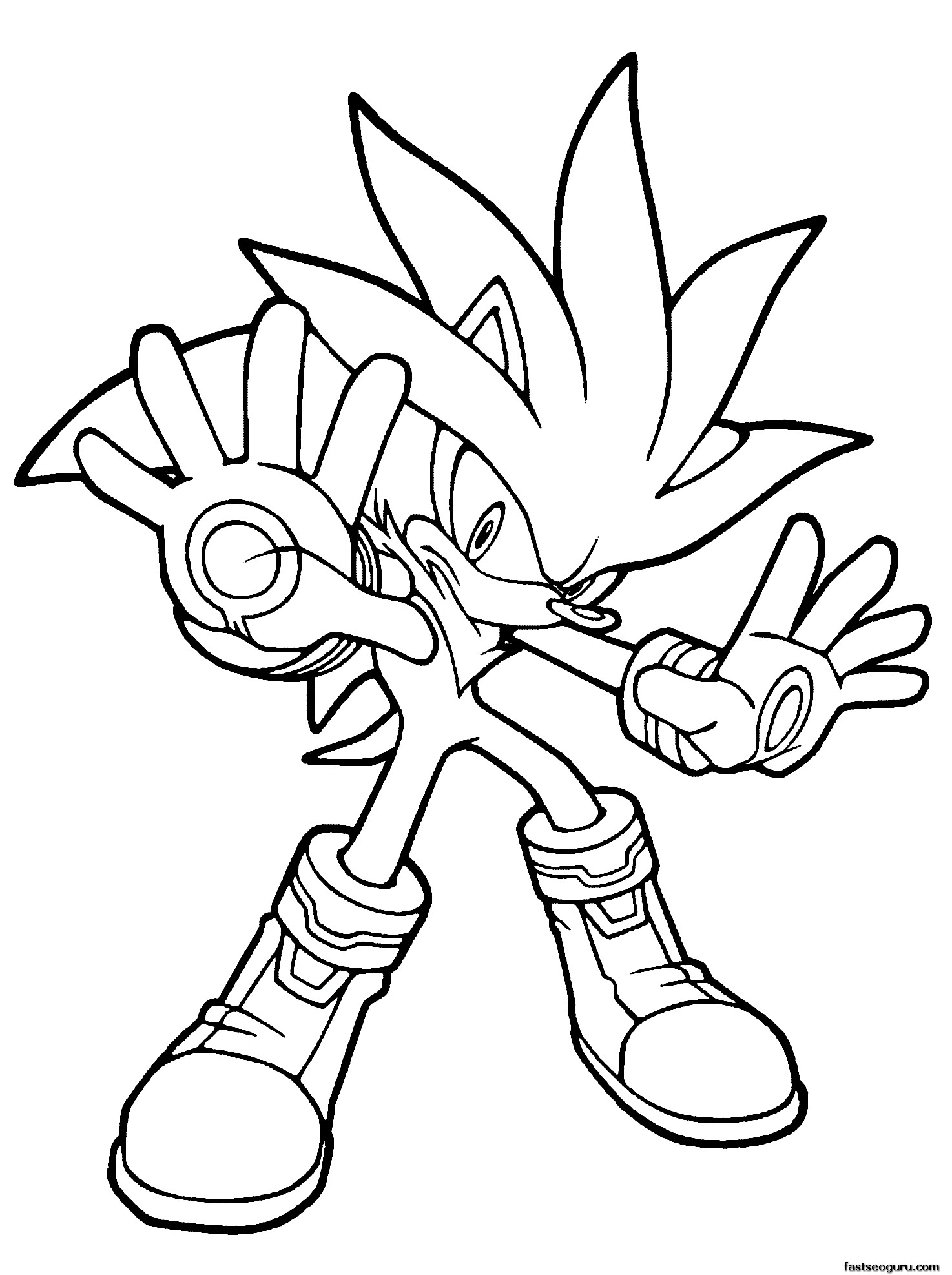 sonic the hedgehog silver in