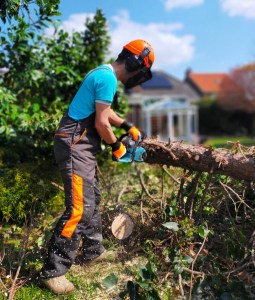 2021 Lumberjacking; Chainsaw goes brrr