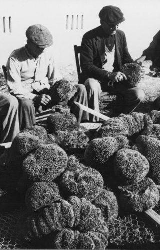spongefishermen 1944-720