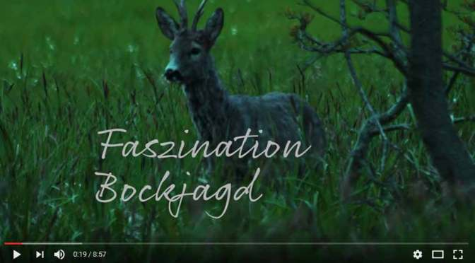 Faszination Bockjagd
