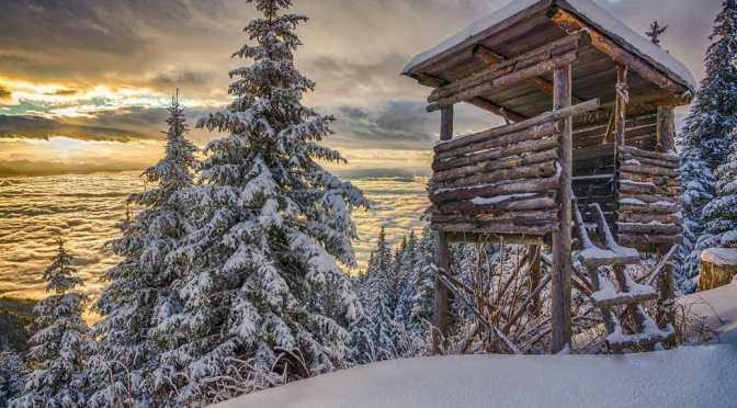 Das große  winterquiz