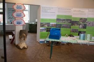 Ausstellung zum Wasser in der Naturschutzstation Schwerin (c) Frank Koebsch