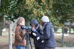 Kranichbeobachtungen auf der Malreise in den Müritz Nationalpark (c) FRank Koebsch (3)