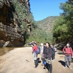 Epic canyoning fail… but a great walk on the Colo River to Wollemi Creek