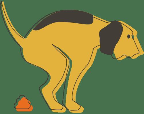 Illustration of a dog taking a poop