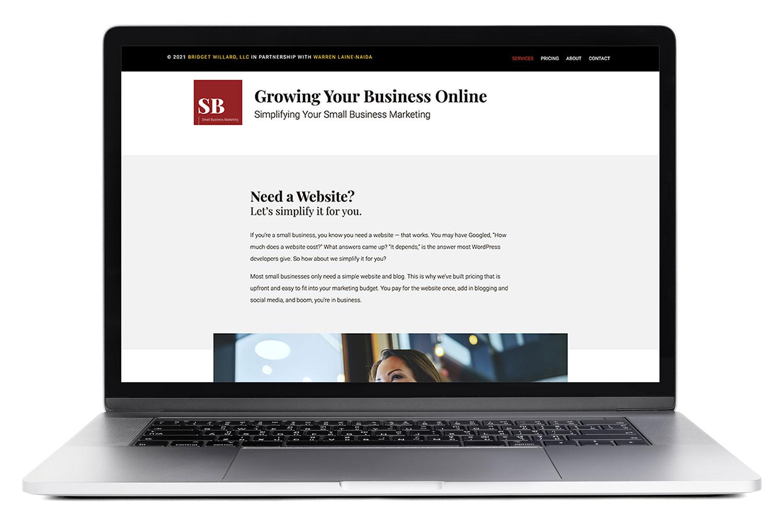 Website Redesign for Small Business Marketing Online With Bridget Willard and Warren Lane-Naida