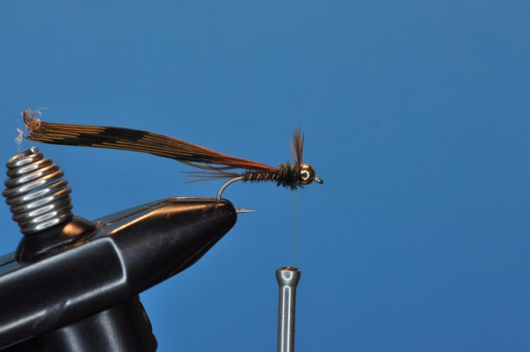 Pheasant Tail Nymph Step-by-Step
