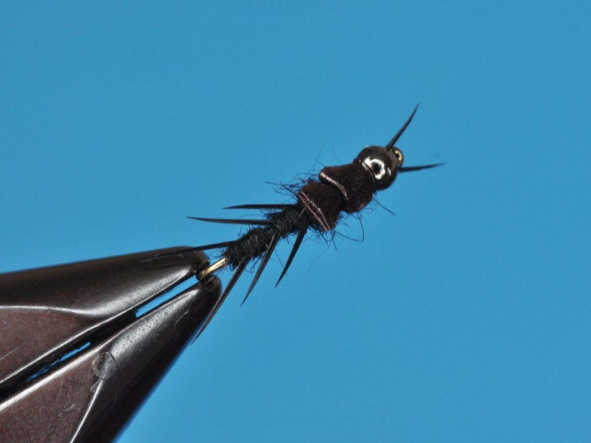 Black Stonefly Nymph Step-by-Step