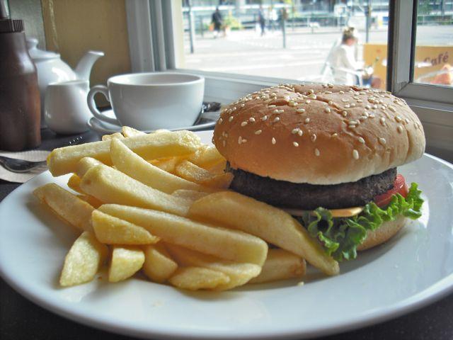 https://i2.wp.com/fatgayvegan.com/wp-content/uploads/2011/05/burger.jpg?fit=640%2C480
