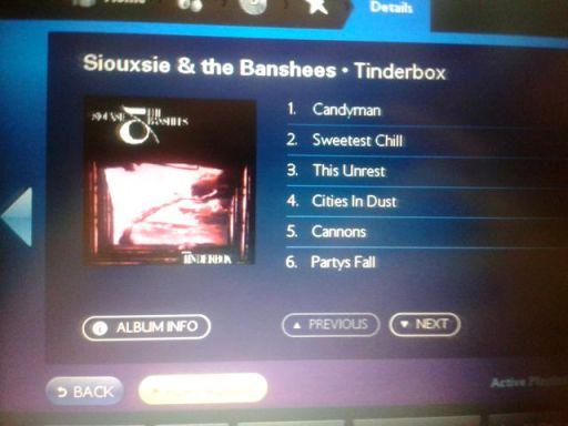 Siousxie & The Banshees - Tinderbox