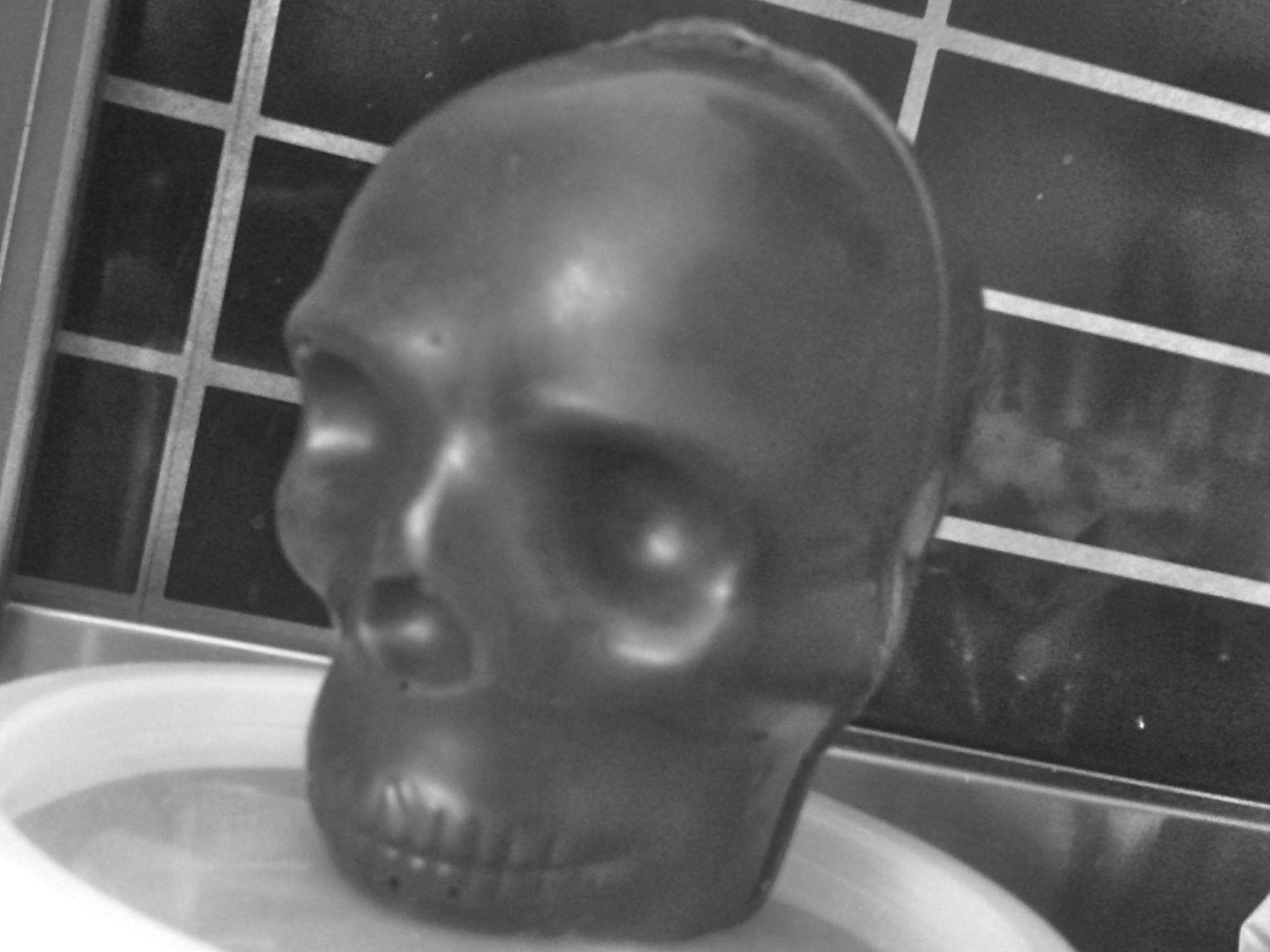 https://i2.wp.com/fatgayvegan.com/wp-content/uploads/2013/07/skull.jpg?fit=1770%2C1327