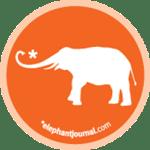 Now on elephant journal!