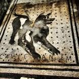 Cave Canem mosaic - Pompeii