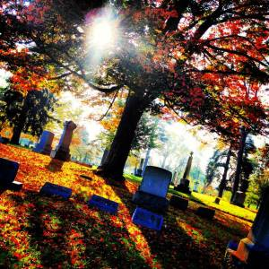cemetery oberlin fall mood