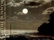 The-Killing-Moon brooding mixtape