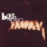 mouth bush