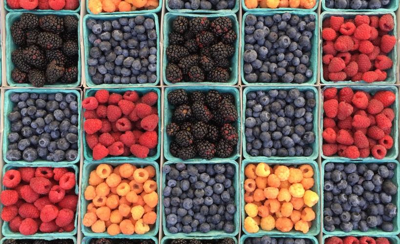 Punnets of blackberries, blueberries and raspberries