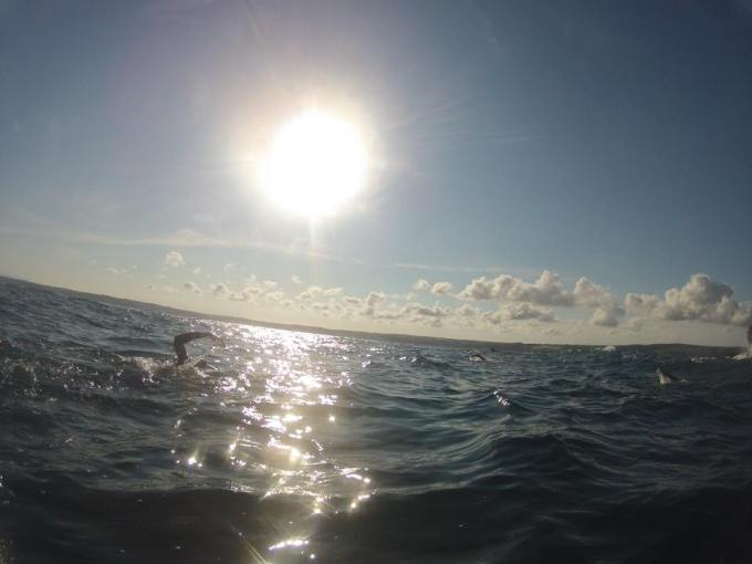 Swimmers in the sea with a bright sun in the sky.