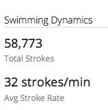 Crazy Garmin swim data