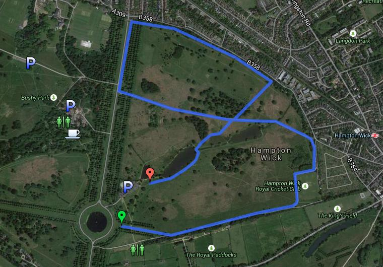 Bushy parkrun route