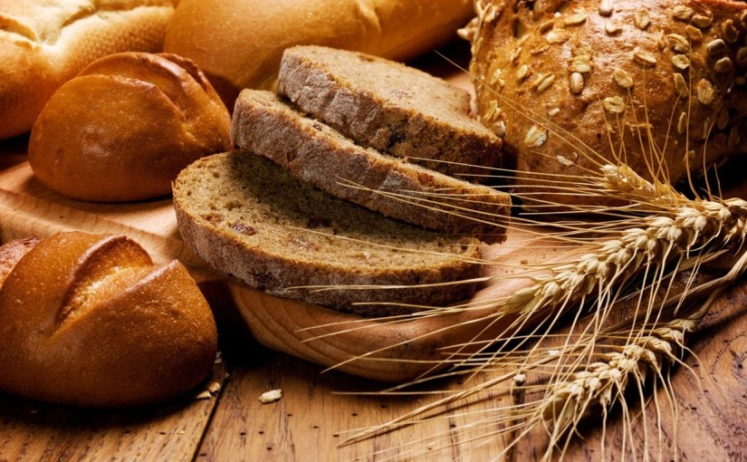 The Eighteenth Sunday of Ordinary Time: Bread of Life Discourse II – What's Your Hunger?