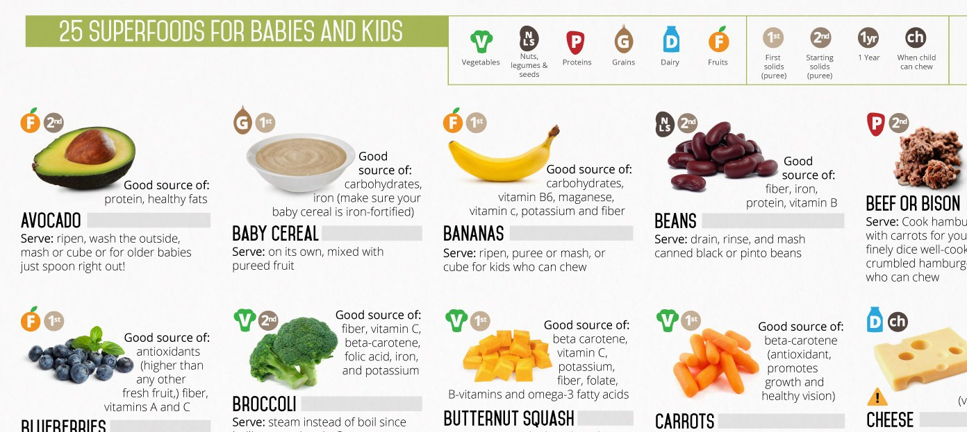 Healthy High Fat Foods For Babies