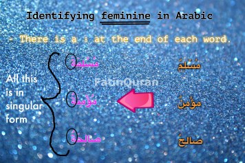 3 identifying feminine in Arabic