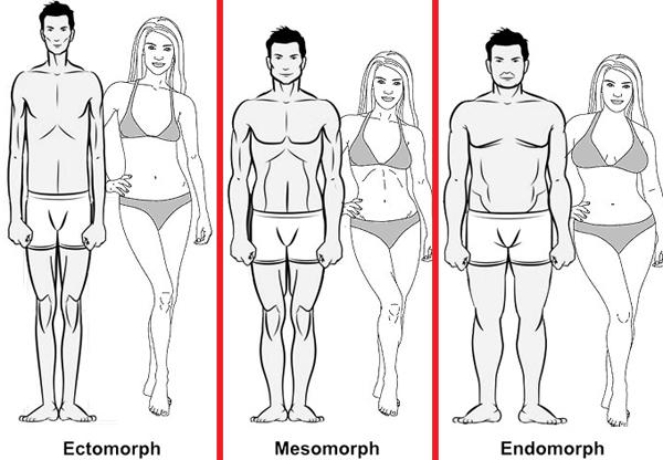 body_types1
