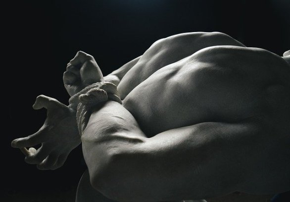 muscle building tips for men over the age of  - Muscle Building Tips For Men Over The Age Of 40