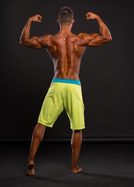 why bodybuilding  is great for your health 1 - Why Bodybuilding  Is Great For Your Health