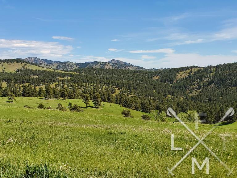 High angle of the meadow at White Ranch Park.  The tree pocked meadow falls away.  A distant high rocky outcrop looks over in the background