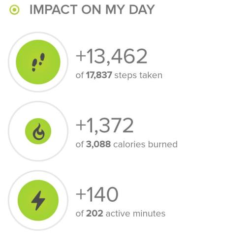 Stats from fitbit.com on my hike today. 13, 462 steps.