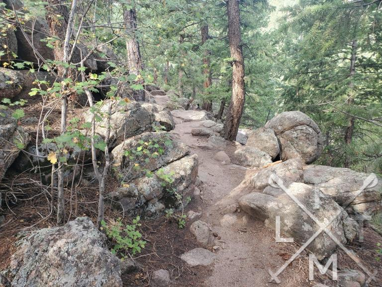 A view of the north loop trail.  Some rocks to step over but a fairly well defined trail.