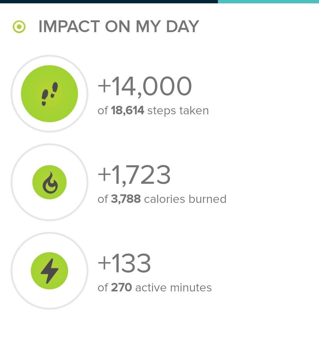 Stats from today's hike from fitbit.com.  Today's hike was exactly 14,000 steps.