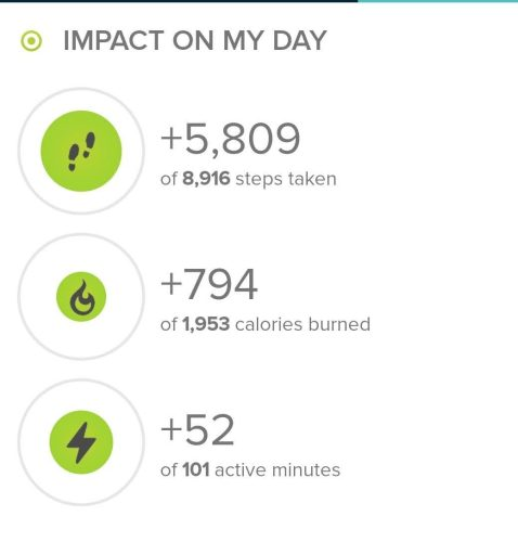 Stats from today's hike from my FItbit Ionic.  Today's hike I took 5809 steps.