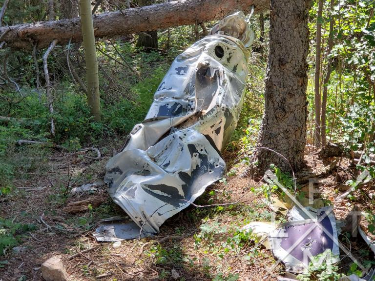 The remains of the fuselage from the crashed plane leaning up against a tree