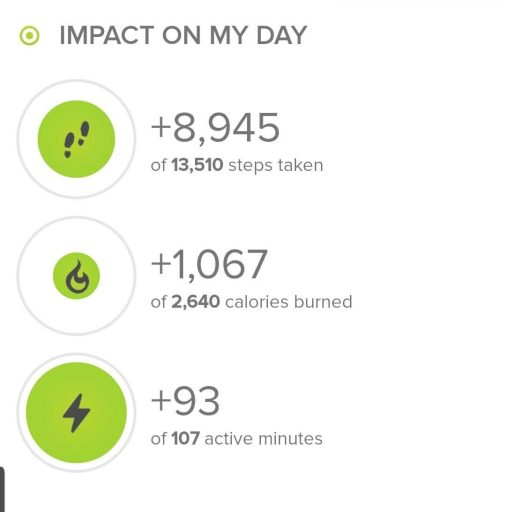 Step stats from the hike at Caribou Ranch open space.  The hike netted 8945 steps.