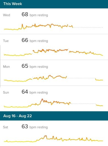 My resting heart rate in 2020.   Over four days has a high of 68 and low of 63.