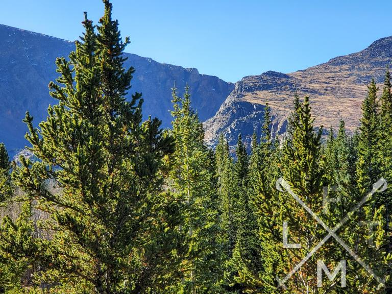 The view from the first clearing with two large mountains in the background and pine trees in the foreground.
