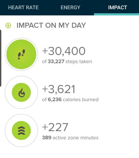 Step count from today's hike was pretty high.  30,400 steps.
