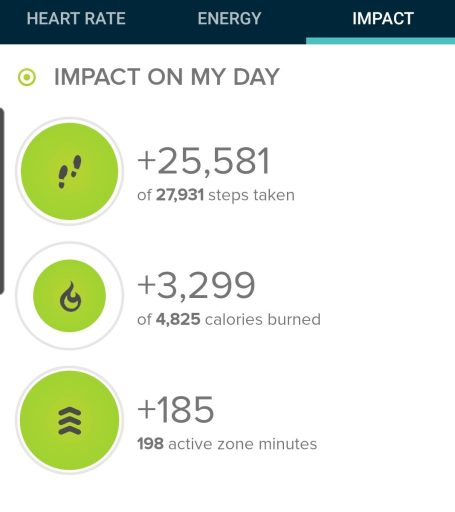 Today's step count from my Fitbit was 25,581 steps