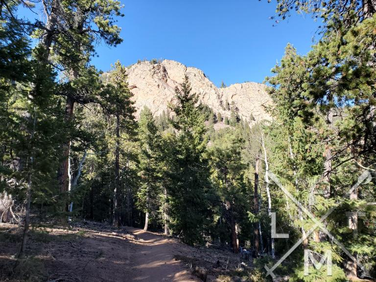 A rock formation behind the trees on the borderline trail.