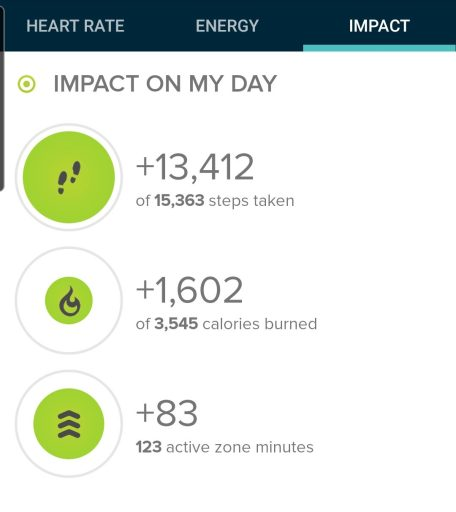 Today's step count was 13,412 steps.