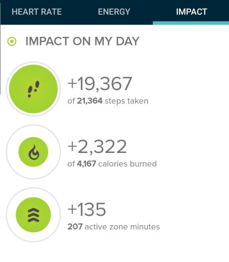The step count from today's hike was at 19,367 steps.